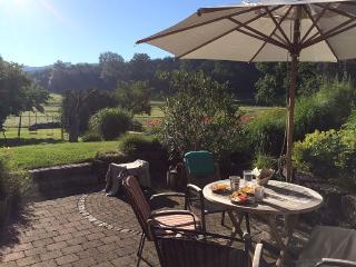 Gemütliche FeWo mit großem Garten - Sulzberg vacation rentals