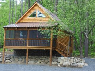 Ruby Hill Cabins on Lake Algonquin - Wells vacation rentals