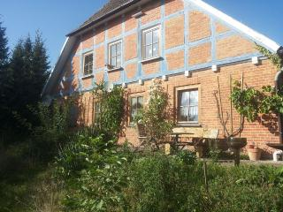 Family-friendly apartments for horse enthusiasts - Neubrandenburg vacation rentals