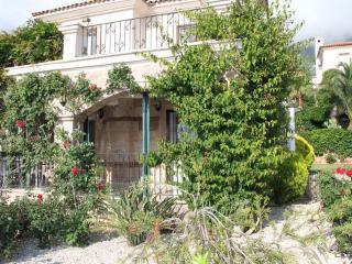 beautiful villa in ovacik,oludeniz - Oludeniz vacation rentals