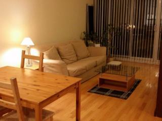Richmond Hill - Spacious bright condo - Richmond Hill vacation rentals