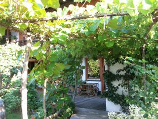 Nice House with Internet Access and Satellite Or Cable TV - Ruhpolding vacation rentals