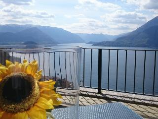 Amazing Lake Como view from Perledo - Perledo vacation rentals