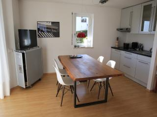 1 bedroom Guest house with Television in Basel - Basel vacation rentals