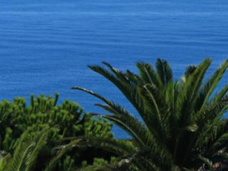 1 bedroom Condo with A/C in Bordighera - Bordighera vacation rentals
