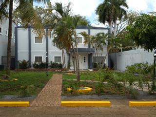 3 BR A/C. Furnished Apartment. Vacation & Business - Managua vacation rentals