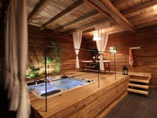 Chambre d'hôtes Touraine - Espace bien-être - SPA - Ligre vacation rentals