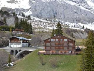 FLORIMONTAGNE A 5 rooms 8 persons 073/028 - Le Grand-Bornand vacation rentals