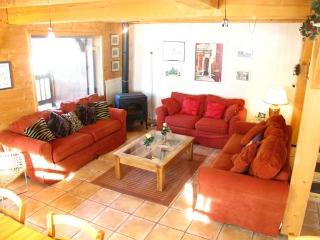 Spacious Apartment with Television and DVD Player - Le Grand-Bornand vacation rentals