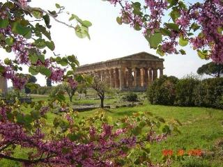 Agriturismo Antica Conca D'Oro - Ogliastro Cilento vacation rentals