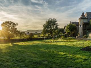 Château Rochefort, appartement jardin - Allaman vacation rentals