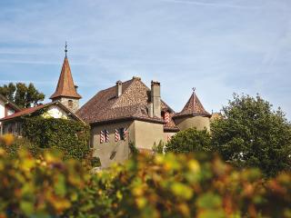 Château Rochefort, appartement vigneron - Allaman vacation rentals
