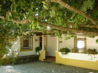 Quinta do Troviscal - Tomar vacation rentals