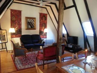 Romantic Condo with Internet Access and A/C - Chinon vacation rentals
