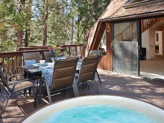 Extraordinary Dome II Rental with Hot Tub - Idyllwild vacation rentals