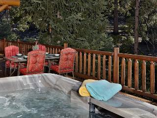 "Luxe Log Cabin with Breathtaking ""Rock View"" & Nature Views - Idyllwild vacation rentals"