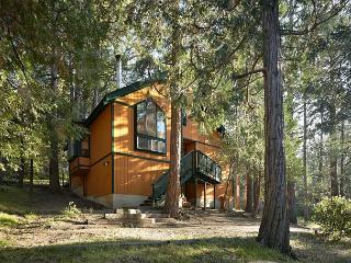 Hidden Oaks  with Stunning Views - Idyllwild vacation rentals