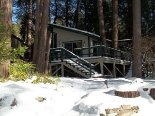 Charming Cottage Nestled In The Pines - Idyllwild vacation rentals