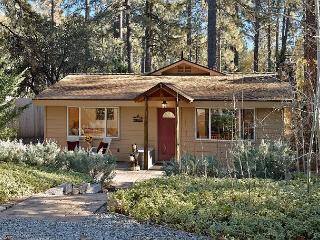 Mountain Retreat, Close To Town - Idyllwild vacation rentals