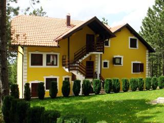 2 bedroom Apartment with Internet Access in Zlatibor - Zlatibor vacation rentals