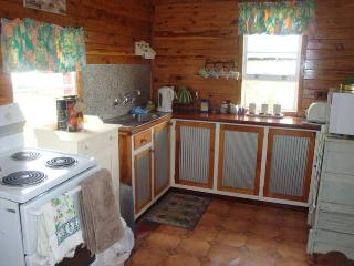 Perfect Cottage with Parking and Corporate Bookings Allowed - Texas vacation rentals