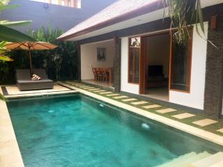 Lotus 2 Bed room Two Lizards Villa - Sanur vacation rentals