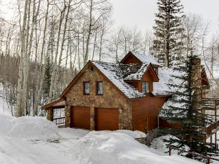 Luxurious home on large private lot w/ gourmet kitchen & private hot tub - Telluride vacation rentals