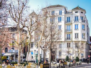 EXCLUSIVE APARTMENT TRINIDAD GRANADA - Granada vacation rentals