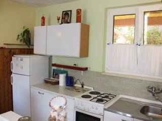 Ustavdic Apartments - Medvinjak vacation rentals