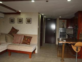 The Wood and Stone Room - Cebu City vacation rentals