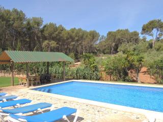 VILLA BOSQUE - Spain vacation rentals