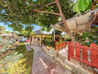 Nice Villa with Internet Access and Garden - Vasilikos vacation rentals