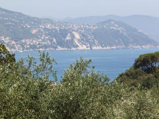 Must Be Dreaming - On The Path to Portofino - Santa Margherita Ligure vacation rentals