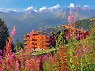 Pierre et Vacances Les Alpages - Bourg Saint Maurice vacation rentals