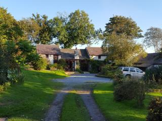 The Coach House at Pantymeillion Cottages with spa - Llanelli vacation rentals