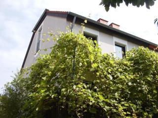 Studio m. Küche & Badmitbenutzung -2 Personen - Cologne vacation rentals