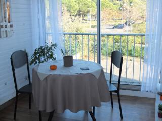 1 bedroom Apartment with Parking in Gruissan - Gruissan vacation rentals
