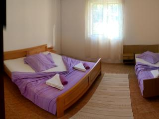 Cozy 1 bedroom Ivan Dolac Condo with Internet Access - Ivan Dolac vacation rentals