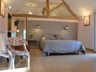 BED&BREAKFAST EN CHAMPAGNE DE 2 A 4 PERSONNES - Maisons les Chaource vacation rentals