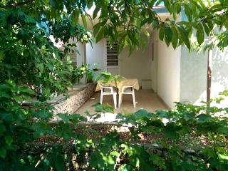 1 bedroom House with Internet Access in Ivan Dolac - Ivan Dolac vacation rentals