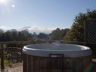 Dreamfarm- Three bedroom deluxe home on 2 acres with Hot Tub & Views - Point Reyes Station vacation rentals