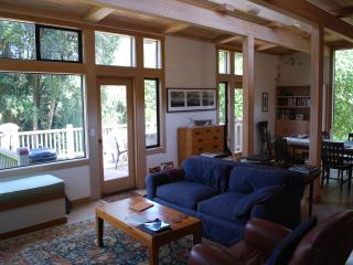 Open Floor Plan with Forest & Water Views - Modern & Rustic - Point Reyes Station vacation rentals