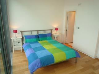 The Old Dublin View Penthouse - Dublin vacation rentals