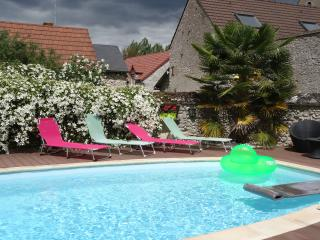 Wonderful 2 bedroom Saint-Laurent-Nouan Guest house with Internet Access - Saint-Laurent-Nouan vacation rentals