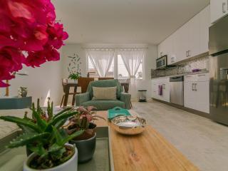 Modern Home 2 Blocks from Marriott & Ritz Carlton - Malmok Beach vacation rentals