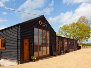 Oasis Barn, Suffolk. Four barns in one building - Halesworth vacation rentals