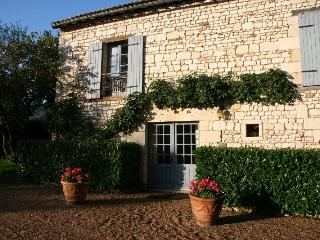 Stone house in XVIIth century Castle near Chinon - Bournand vacation rentals
