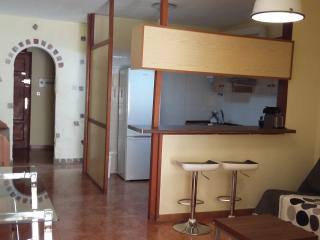 1 bedroom Apartment with Internet Access in Santa Cruz de Tenerife - Santa Cruz de Tenerife vacation rentals