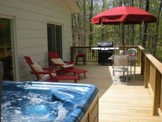 Pinecone Cottage  Hot Tub Mtn View on 145 acres - Grandview vacation rentals