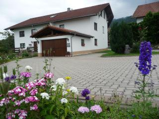Wonderful House/Luxury apartments/Nice view - Nesselwang vacation rentals